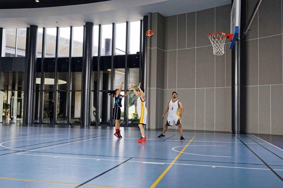 basket_hall_nvp