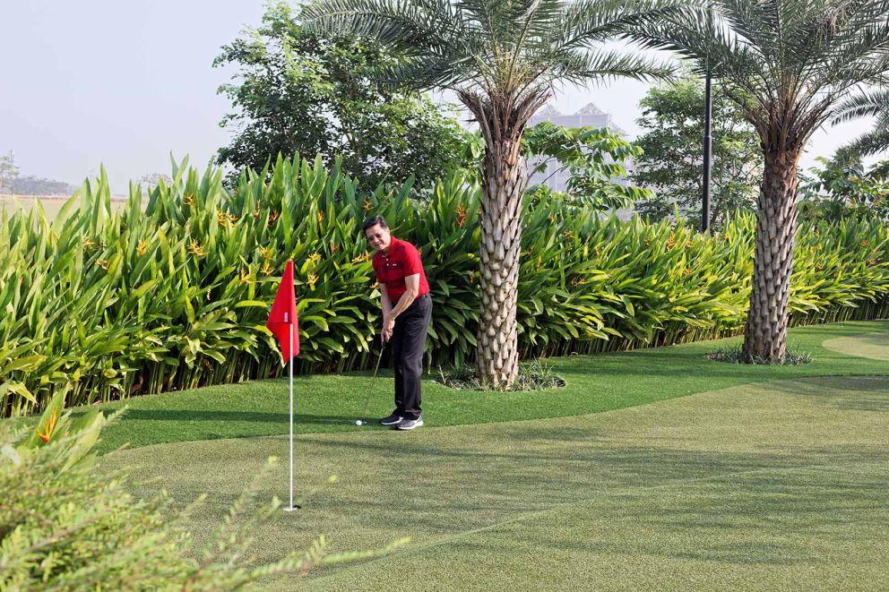 golf_area_nvp